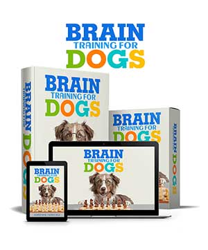 Brain Training For Dogs Review, Health Supplement Hub
