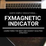FxMagnetic Forex Indicator Review
