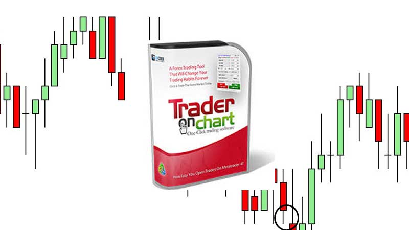 Trader On Chart, Health Support Hub