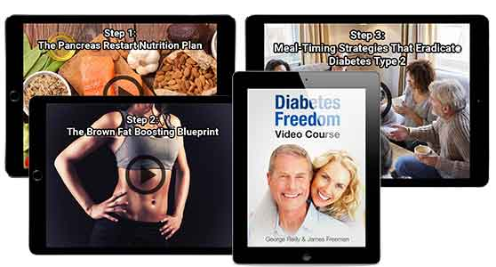 The Components of Diabetes Freedom